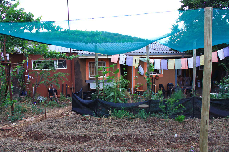 House with permaculture garden